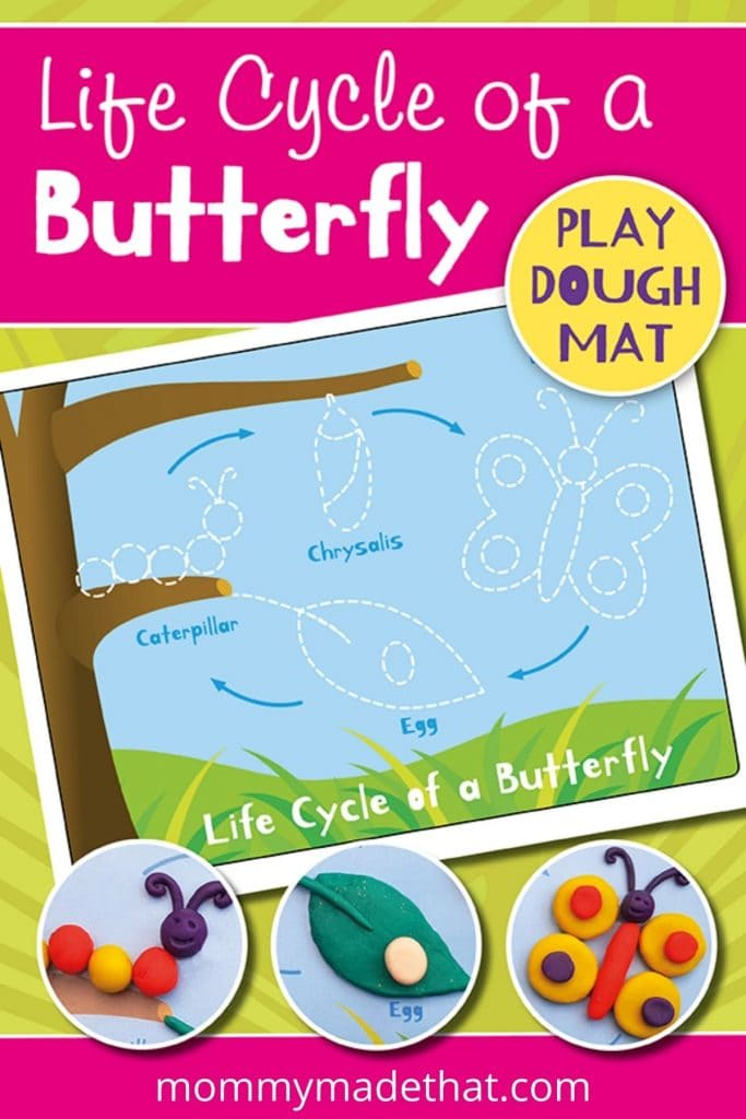 printable mat to learn about lifecycle of a butterfly