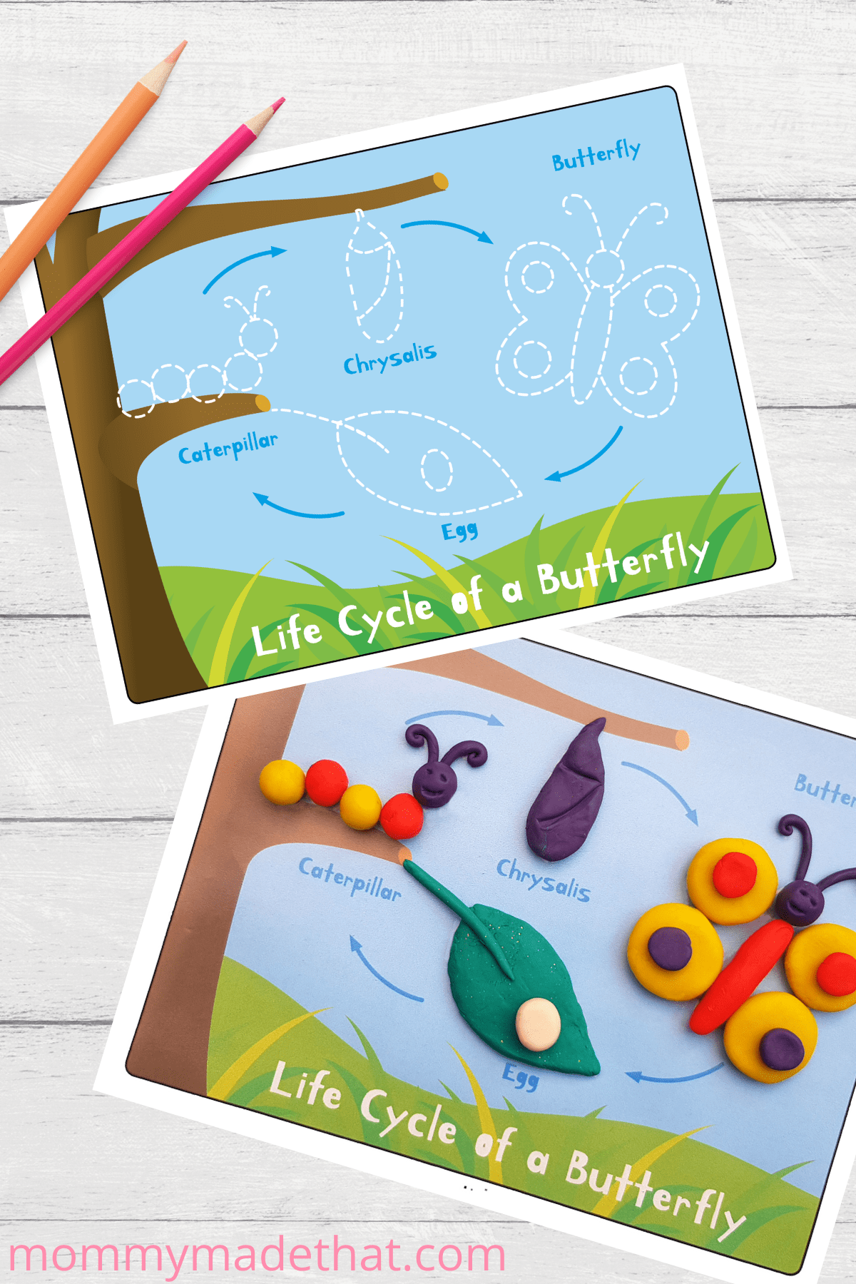butterfly life cycle activity for kids. Free printable play doh mat.
