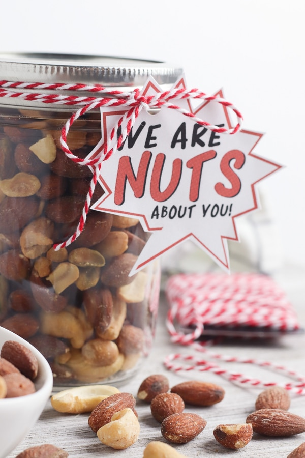 nuts about your printable gift for dad