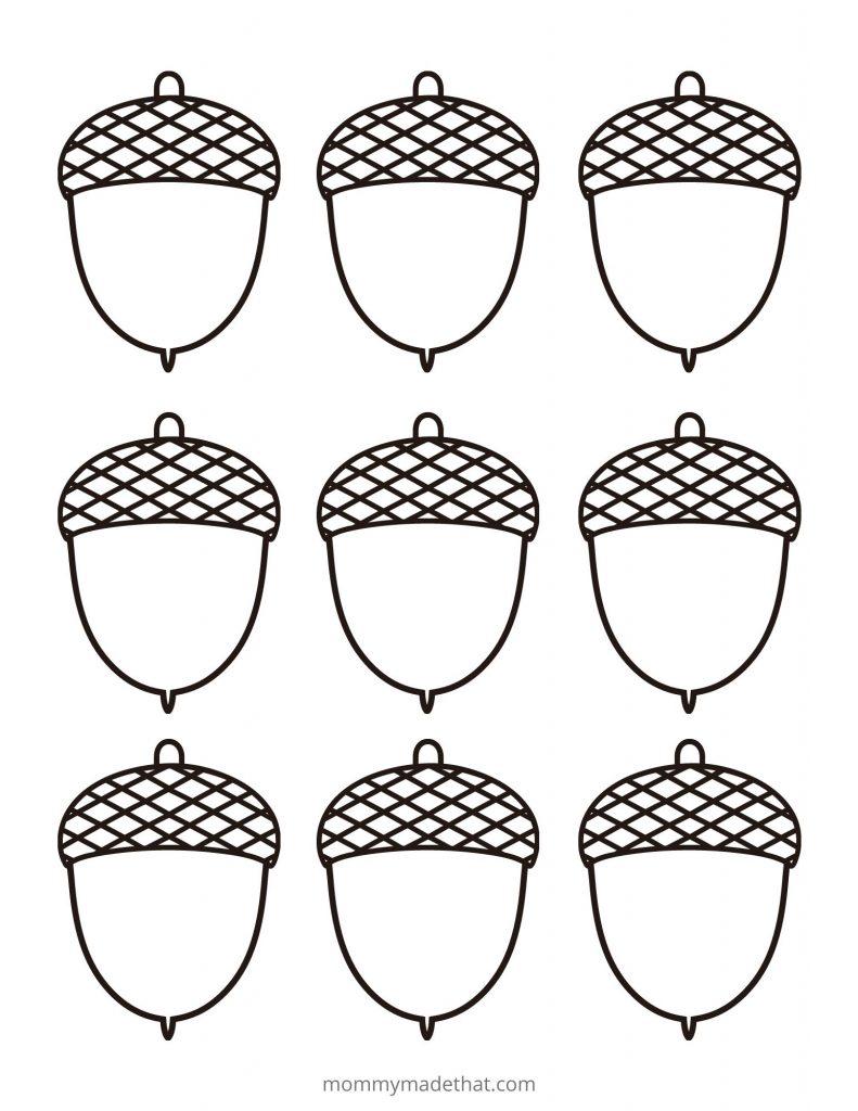 acorn templates