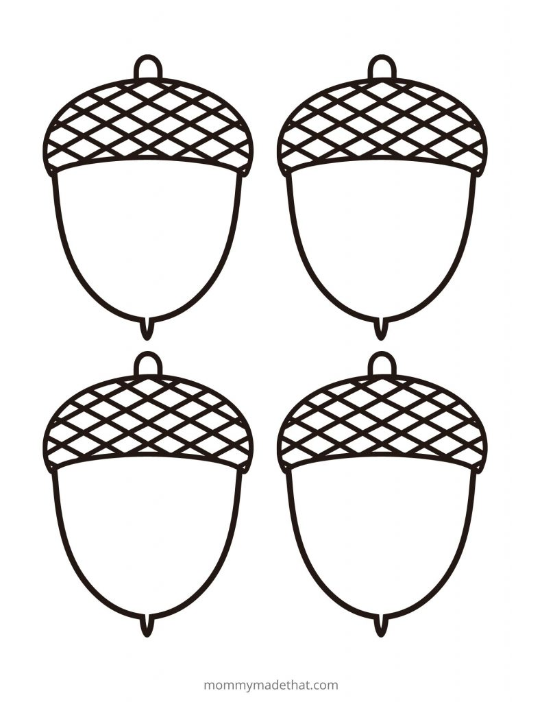 printable acorn template