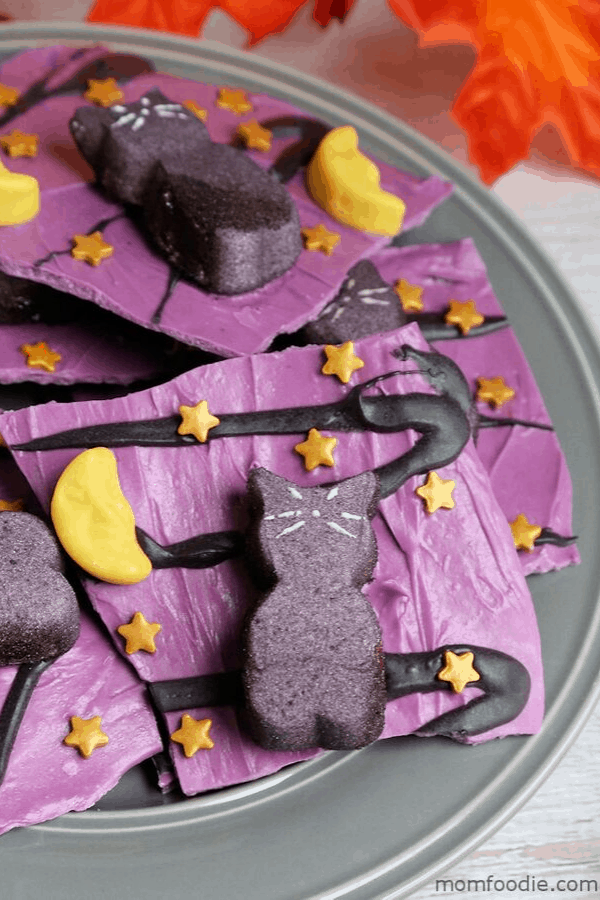 halloween party chocolate cat back