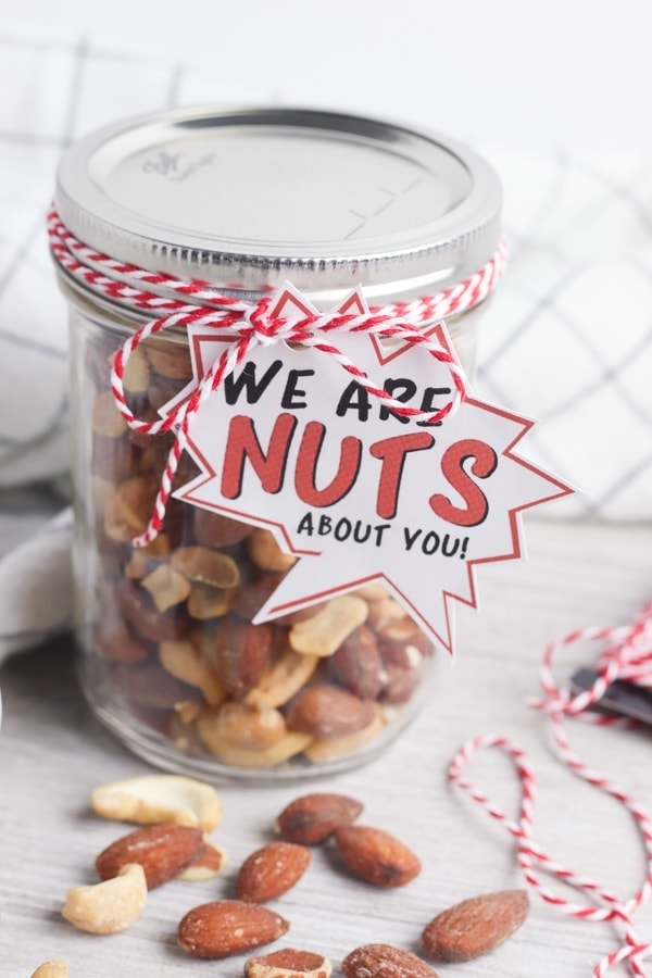 DIY nuts about you fathers day gfit