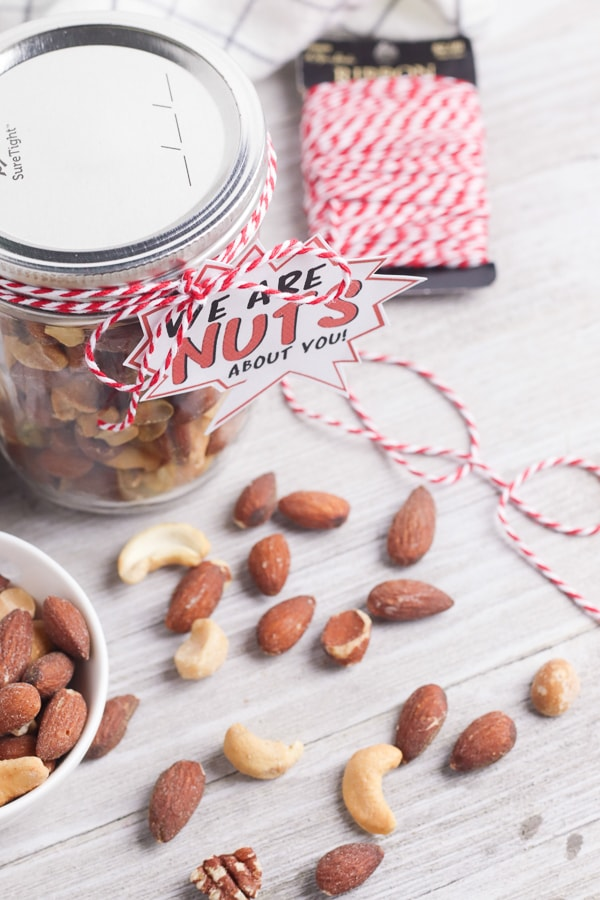nuts about you fathers day gift DIY