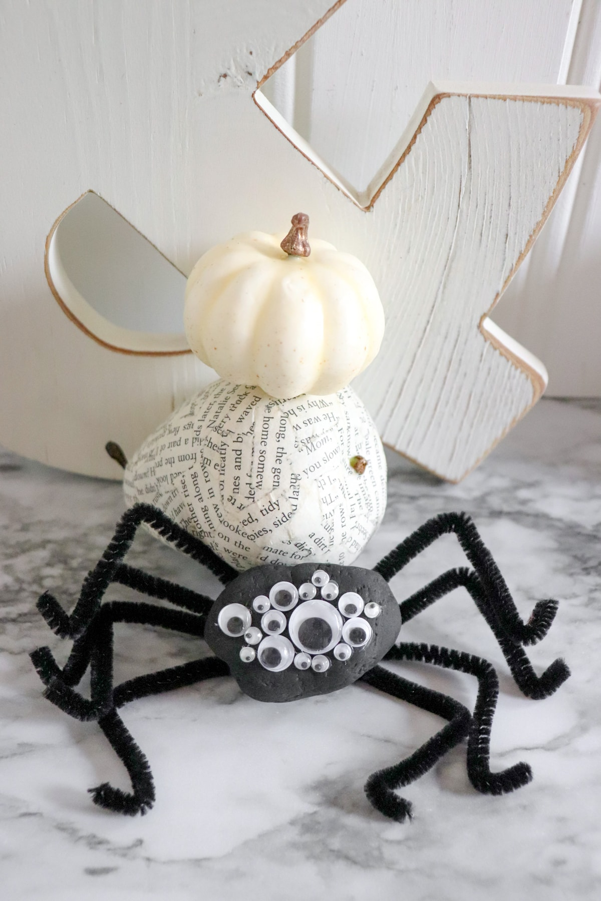 painted spider rock craft