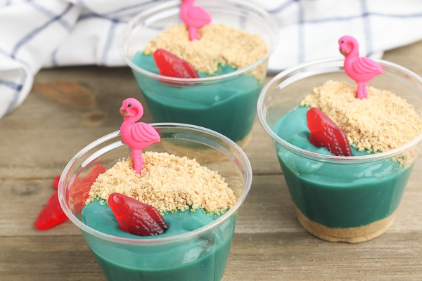 sandy beach pudding cups
